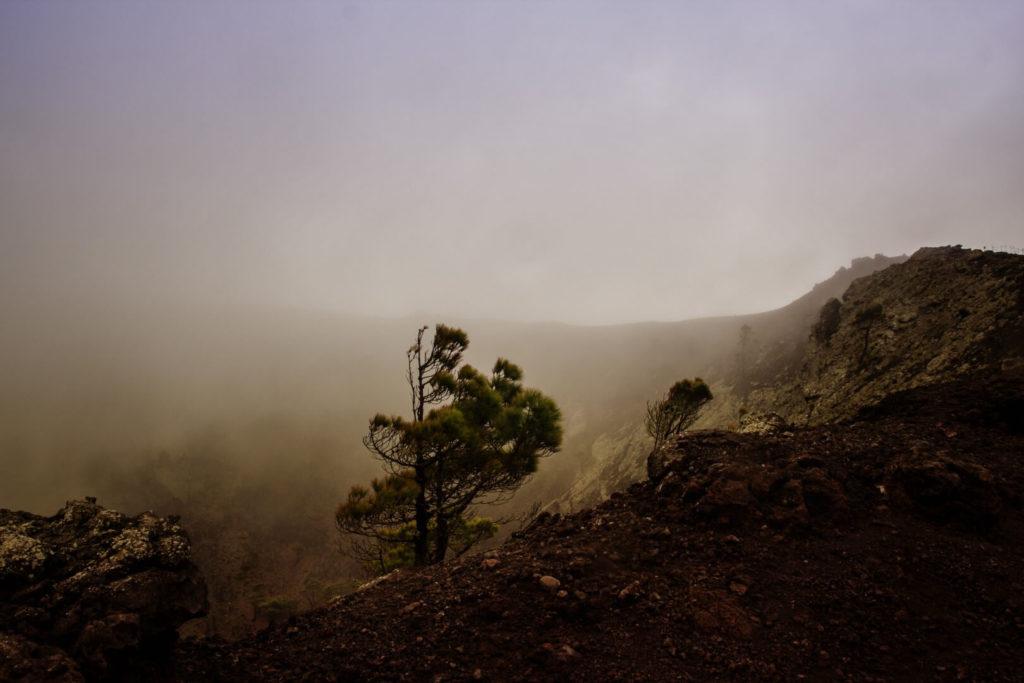 La Palma - view into a vulcano