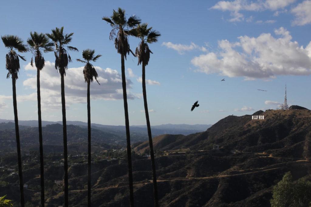 USA - Hollywood Hills